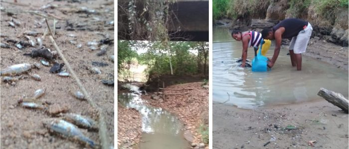 Chapada: INEMA decreta suspensão de 50% da captação de água do Rio Utinga e de seus afluentes Chapada: INEMA decreta suspensão de 50% da captação de água do Rio Utinga e de seus afluentes